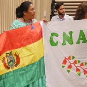 cnamib chile 8dic19