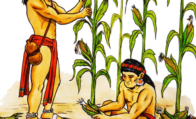 Los-mayas-y-su-Agricultura-1280x720